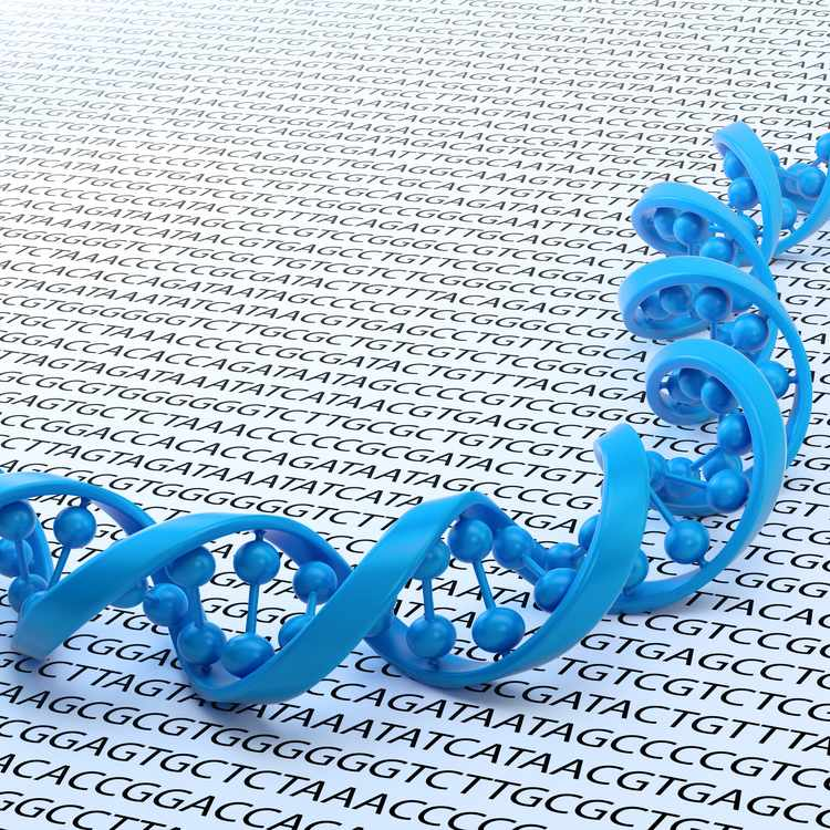 a graphic representation of a strand of DNA against a background of lines of the four base letters - G, C, A and T