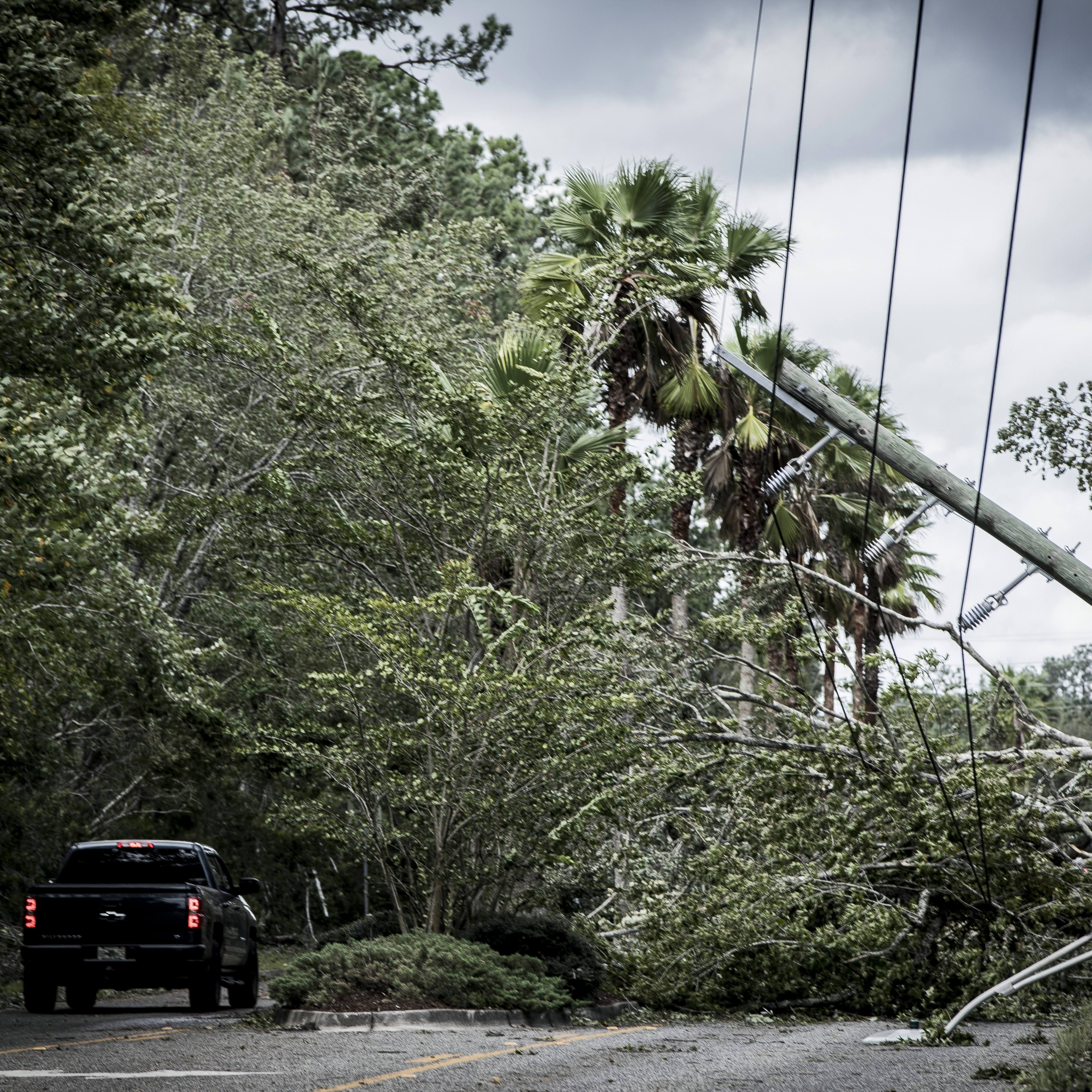 Vehicles navigate around downed trees and power lines on a road in Florida following hurricane Irma.