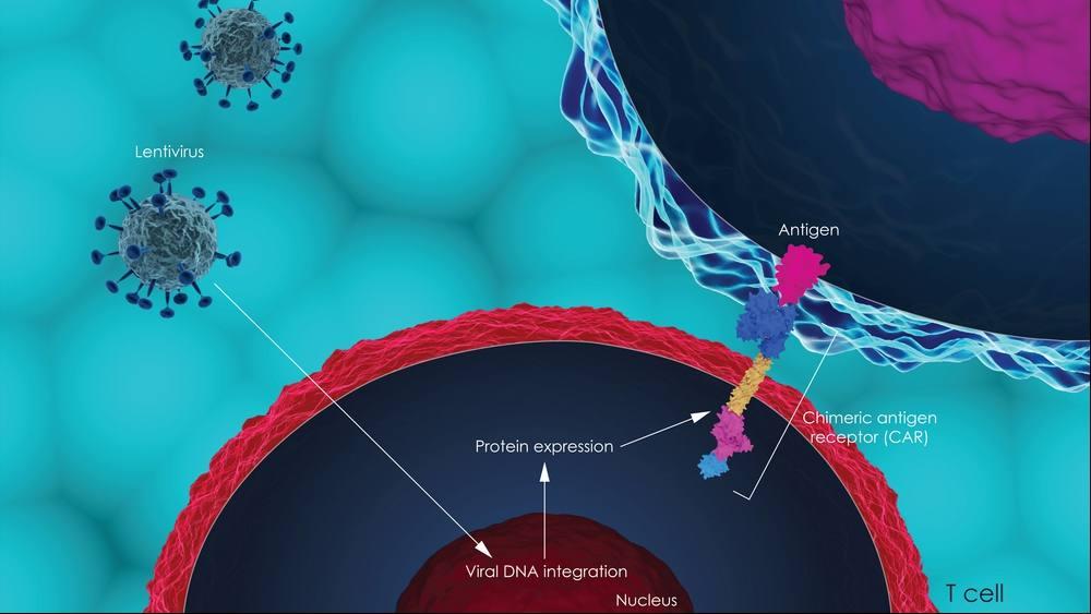 Ilustración tridimensional de la terapia de células T con receptor de antígeno quimérico