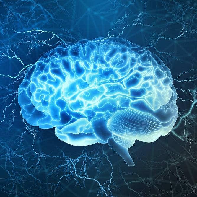 Digital illustration of human brain with electrical activity in background