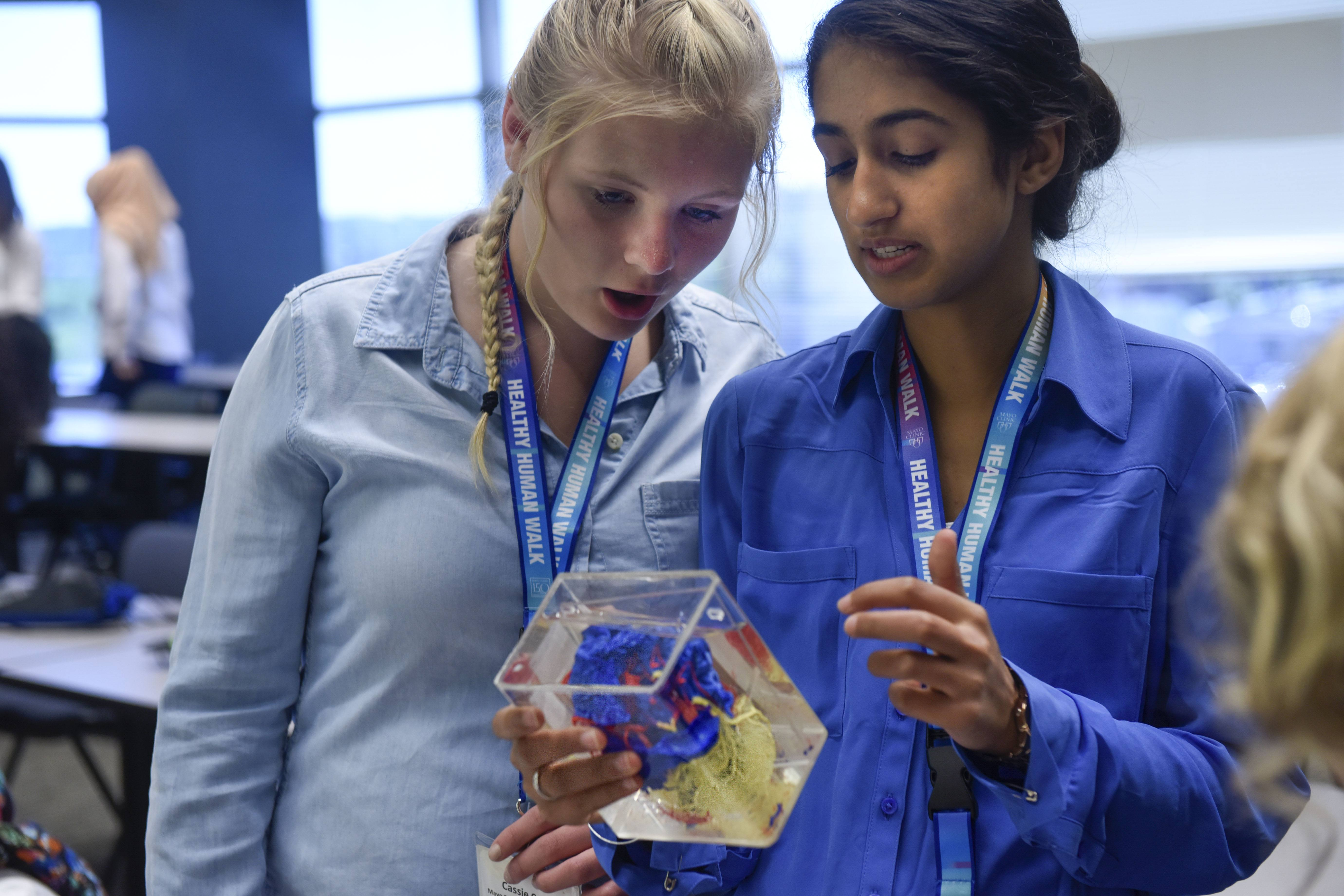 two students in the Mayo Clinic School of Health Sciences career immersion program
