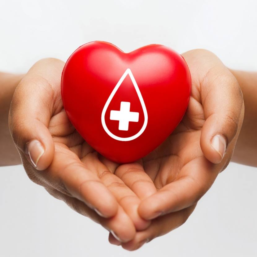 healthcare, medicine and blood donation concept - african american female hands holding red heart with donor sign