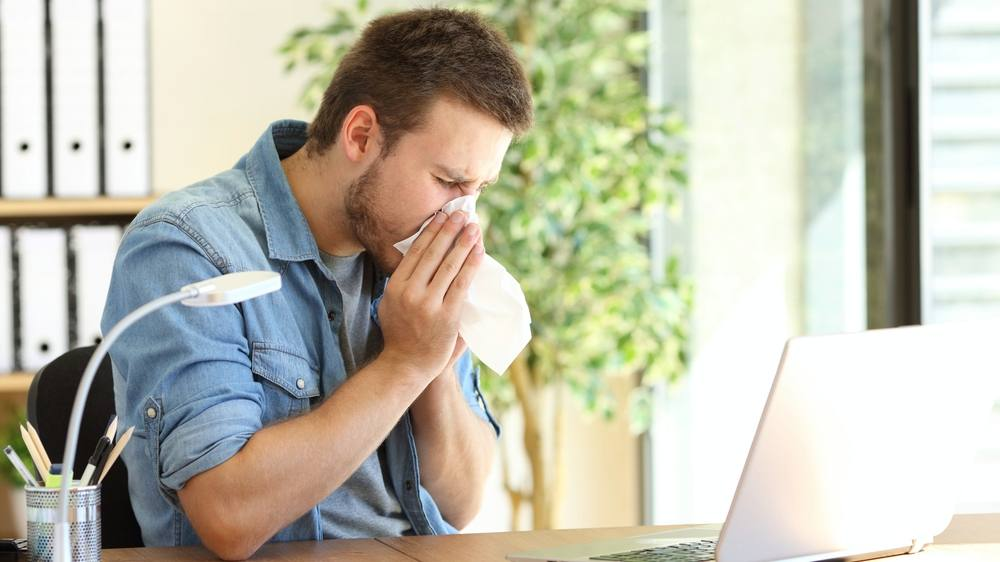 a young man sitting at his desk with a computer and holding a tissue kleenex over his nose because of a cold or sneezing, maybe allergies