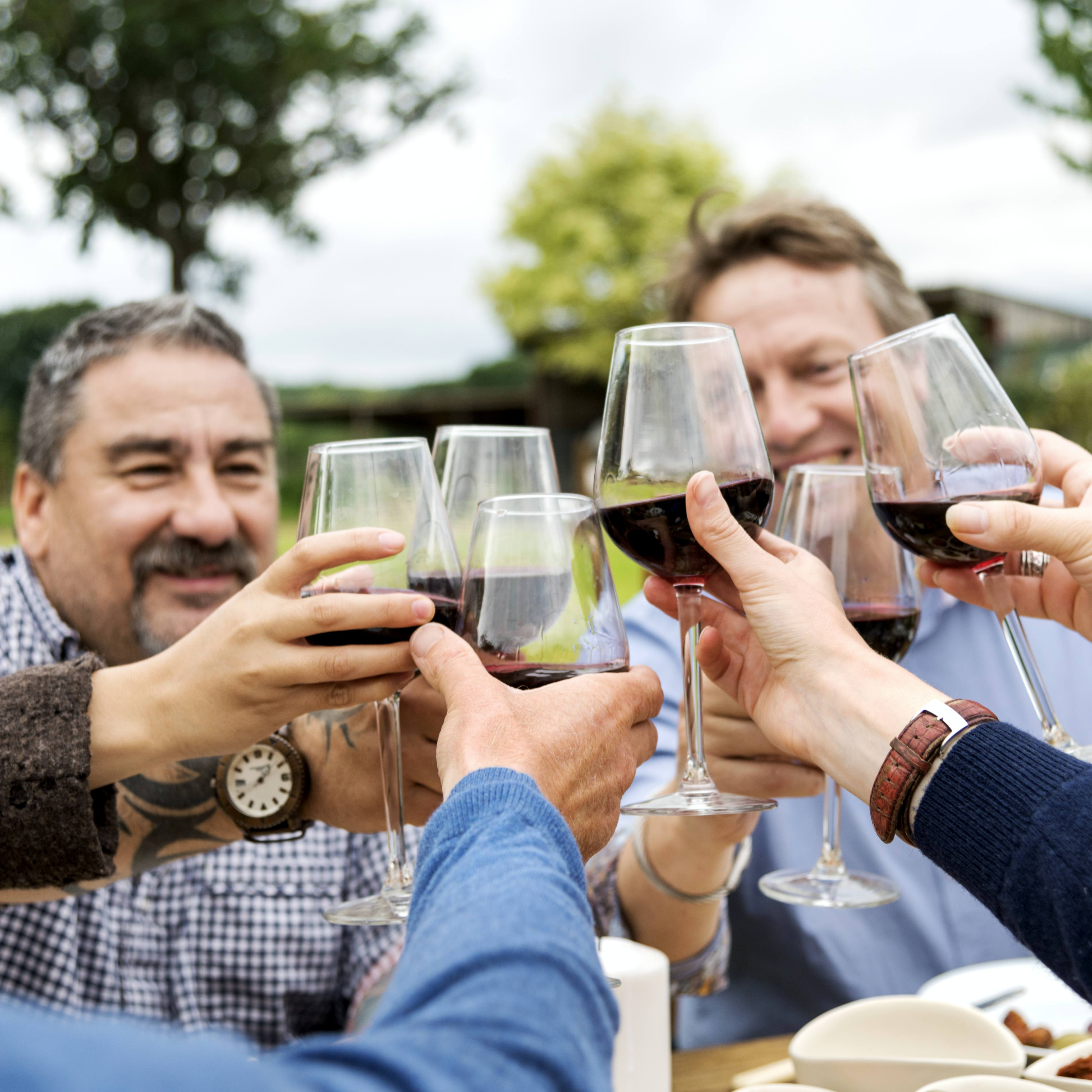 Group of people cheering with glasses of wine