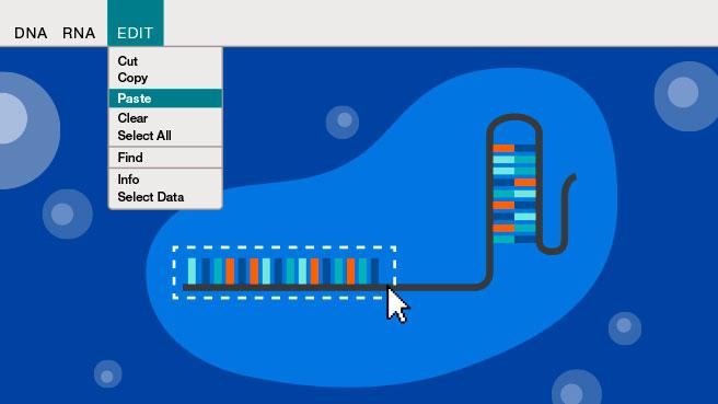 graphic image for CRISPR