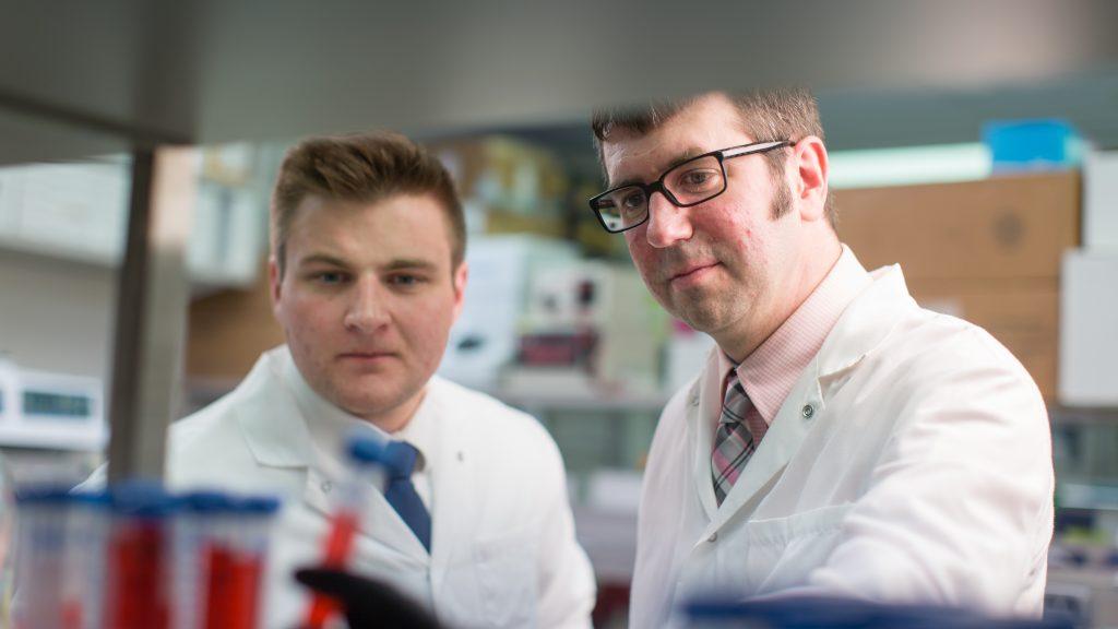 El Dr. Darren Baker, biólogo molecular de Mayo Clinic, (derecha) y Tyler Bussianestudiante de la Escuela de Posgrado en Ciencias Biomédicas de Mayo Clinic (izquierda)