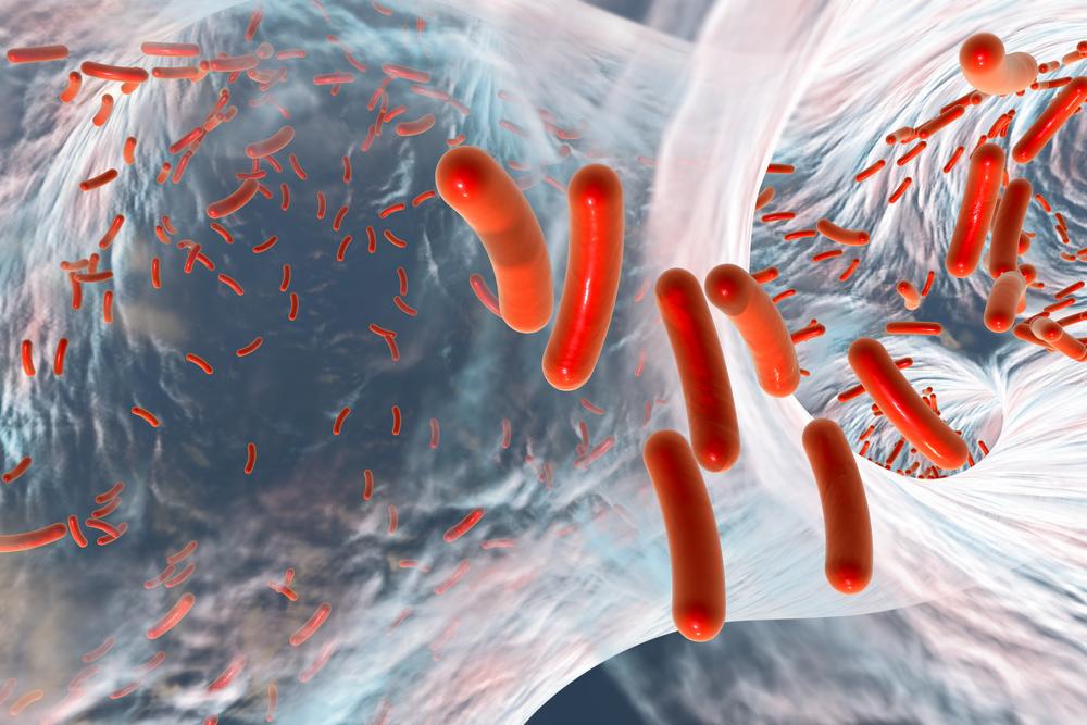 Biofilm of antibiotic resistant bacteria