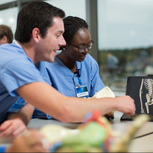 medical students dressed in blue surgical scrubs viewing skeleton on laptop