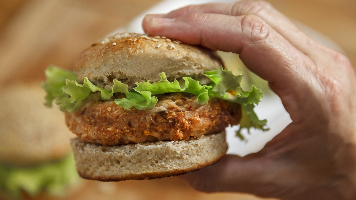 a person holding a barbecue turkey burger