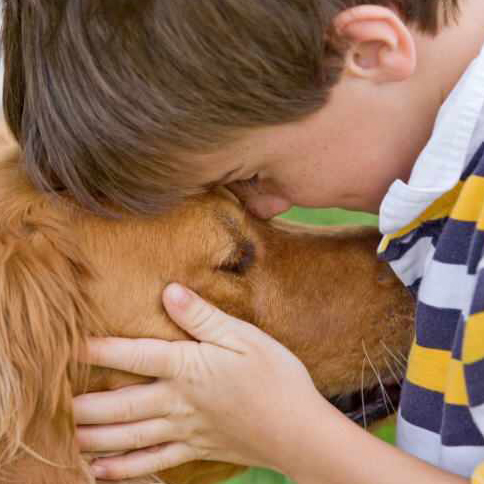 A young boy pets his dog.
