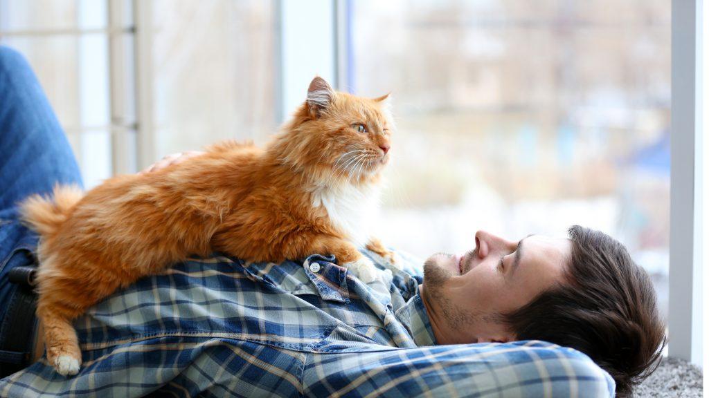 Un hombre recostado en el piso le sonríe al gato que descansa muy cómodo en su pecho