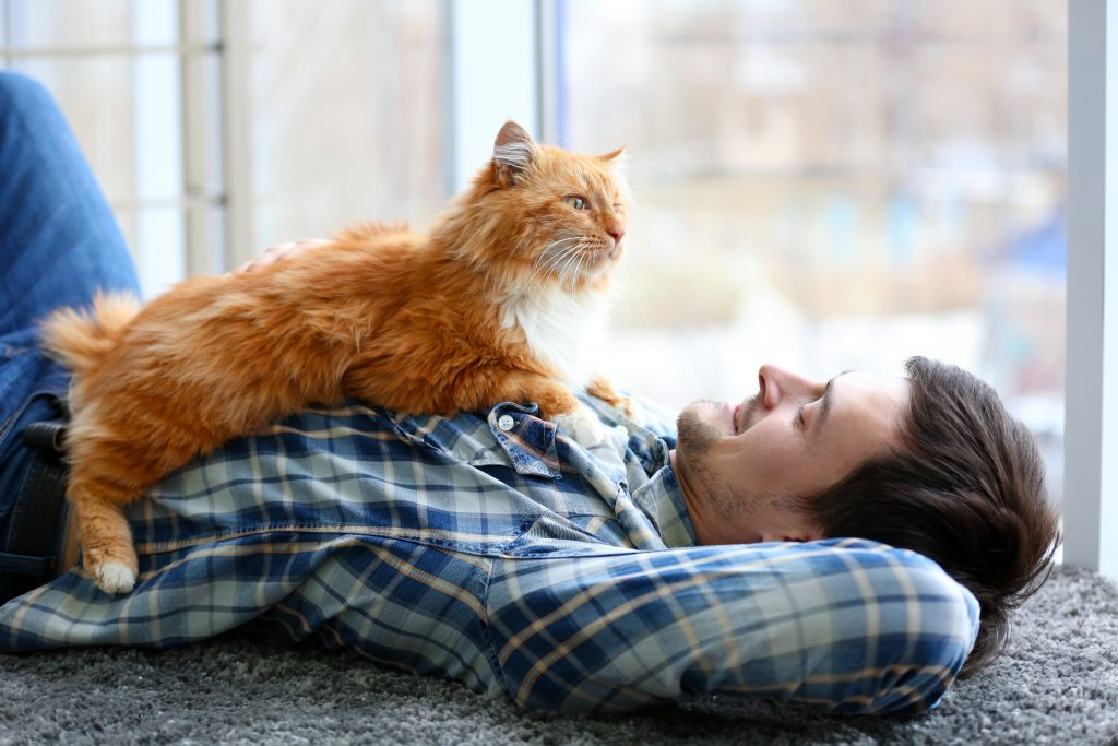a smiling young man lying on his back on the floor, with a big fluffy cat on his chest