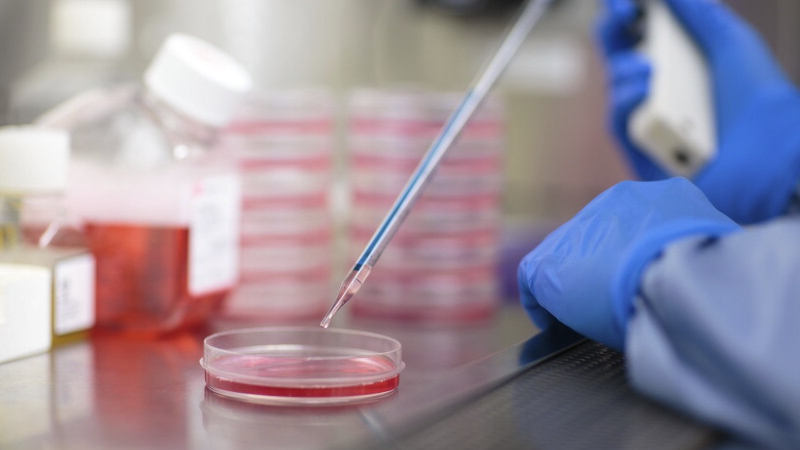 Center for Regenerative Medicine laboratory with a researcher placing droplets into a petri dish