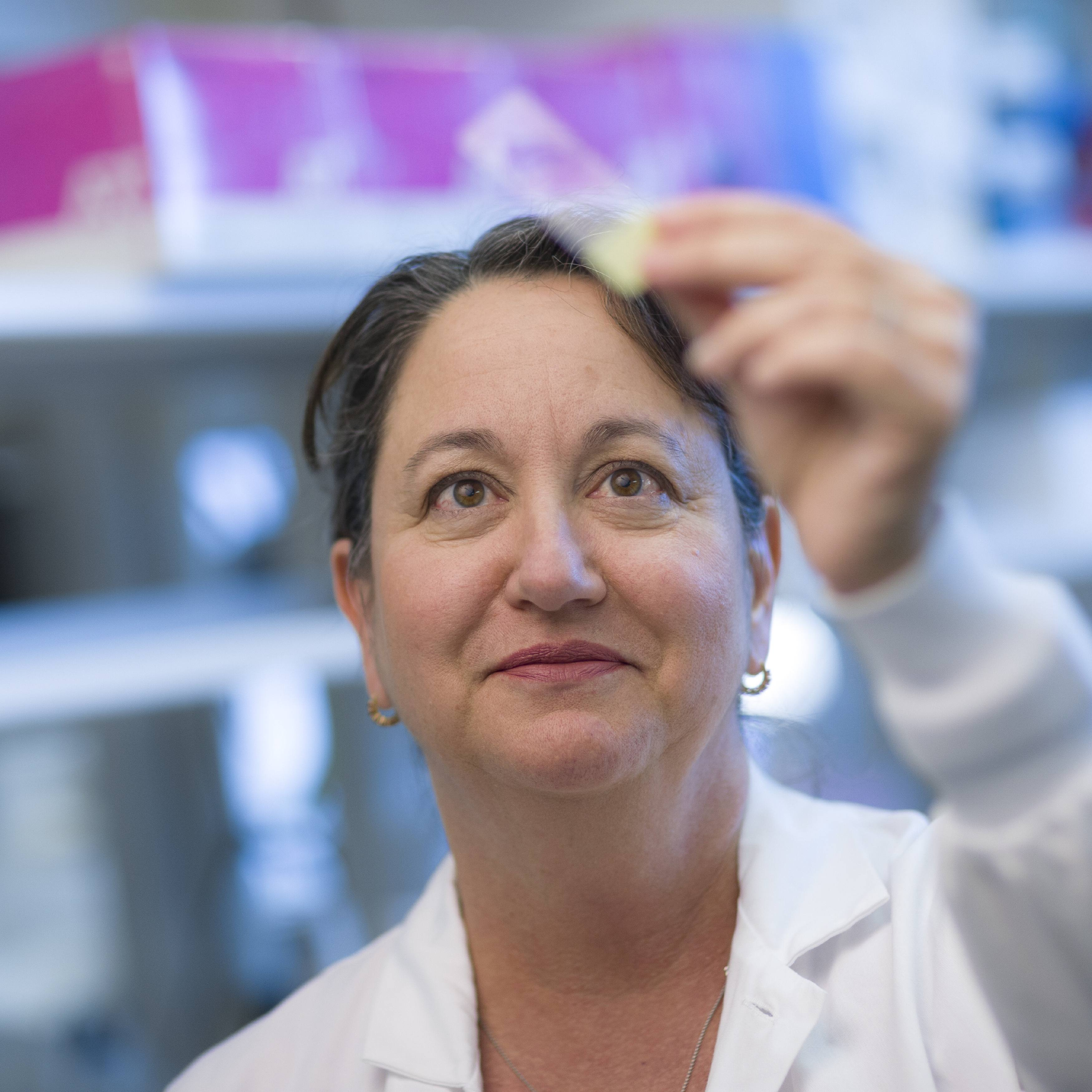 Dr. Lisa Rimsza, a pathologist and director of the Mayo Clinic Molecular Diagnostics – Arizona Laboratory looking at a slide in the research laboratory
