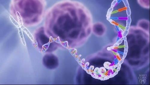 medical illustration of DNA strand