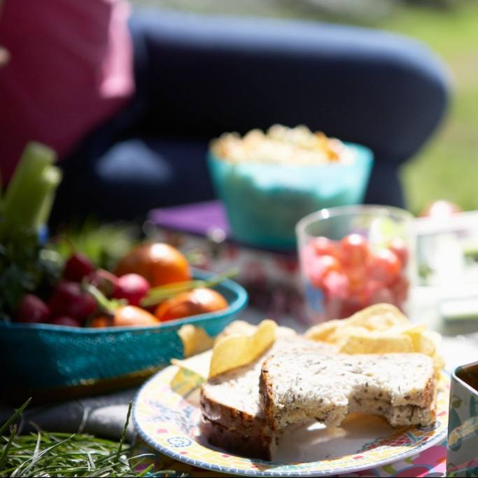 a picnic on the grass with sandwiches, chips, fruits and vegetable on a blanket