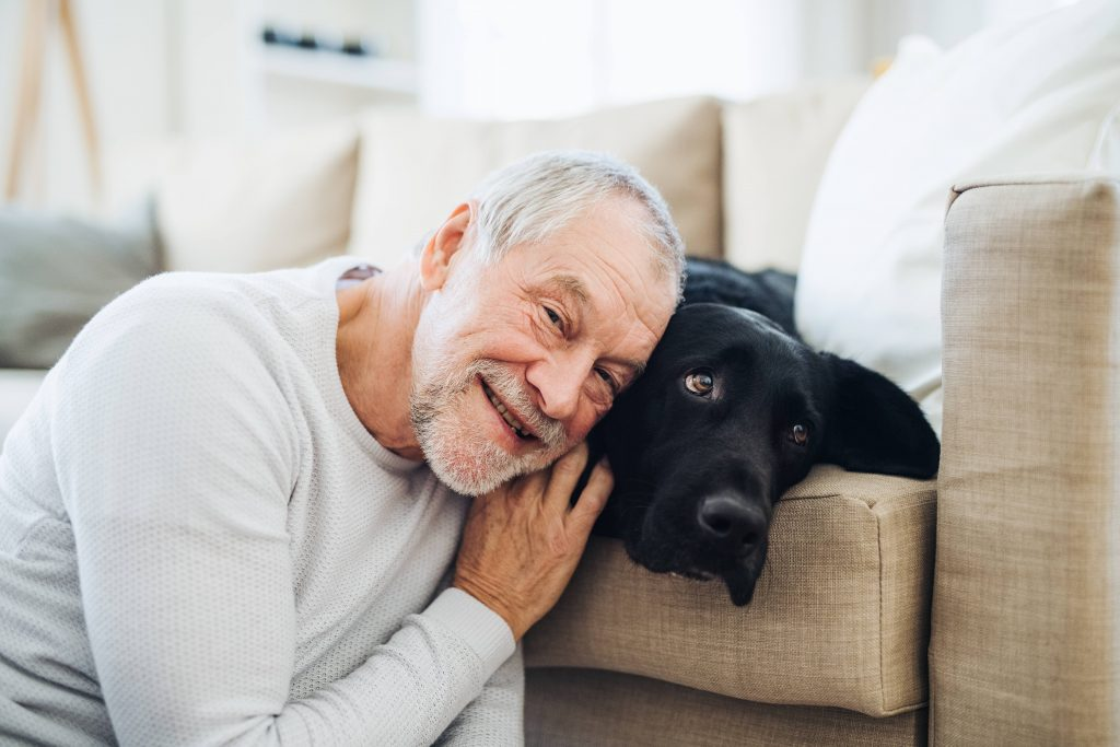 a smiling older man leaning on a large dog on a couch