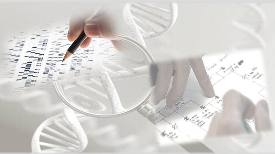 collage of images representing genetic testing