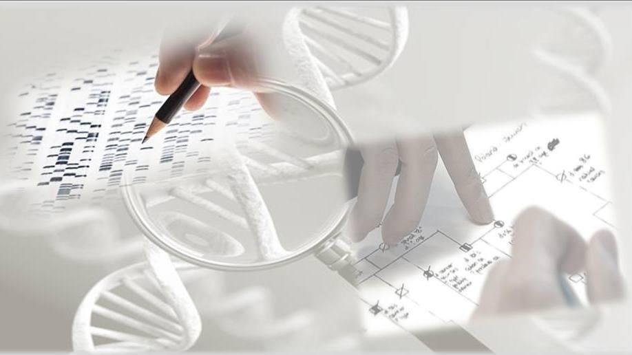 collage con representaciones de pruebas genéticas