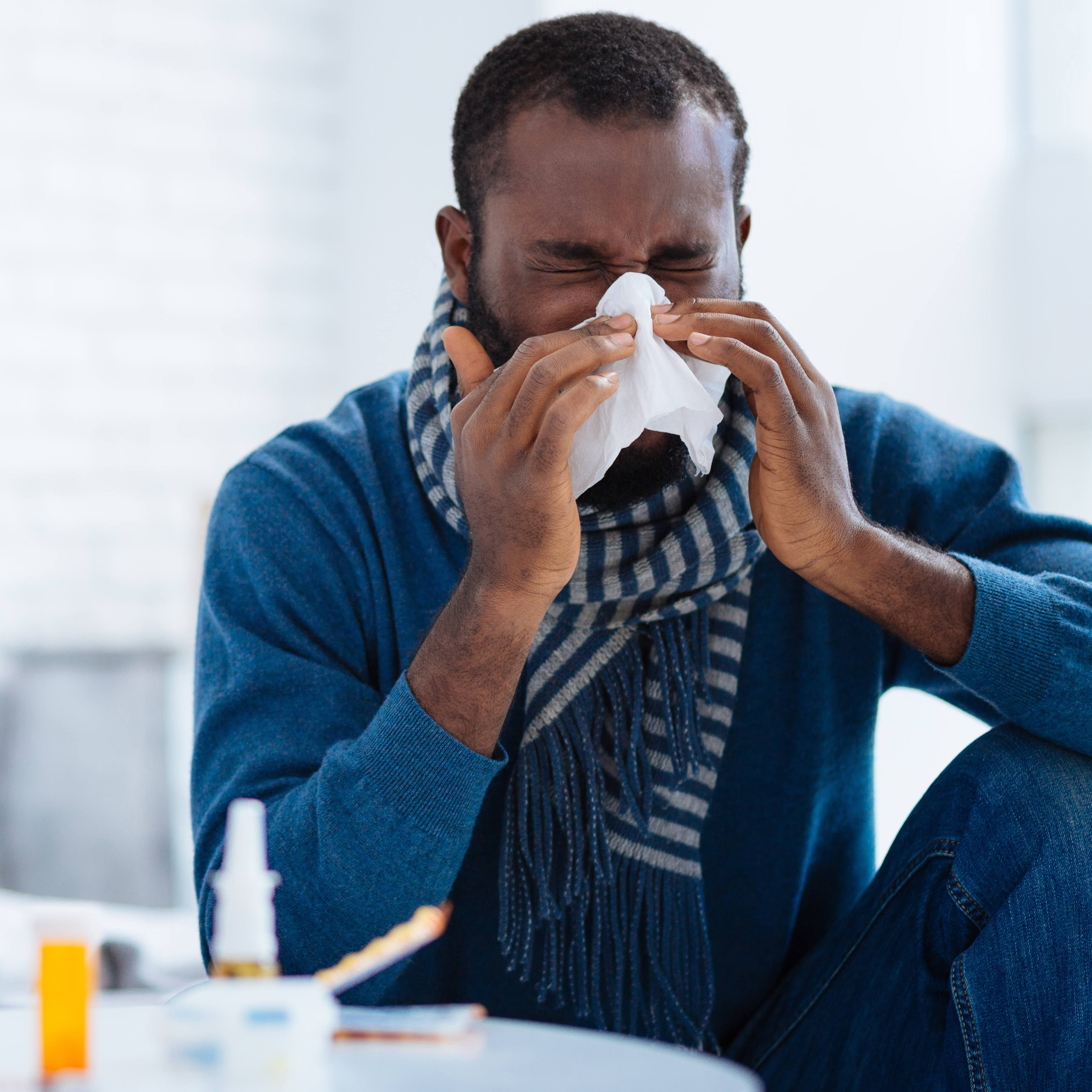 An African American man in blue jeans and a blue sweater blowing his nose into a tissue or sneezing, feeling sick with a cold, allergies or a flu bug