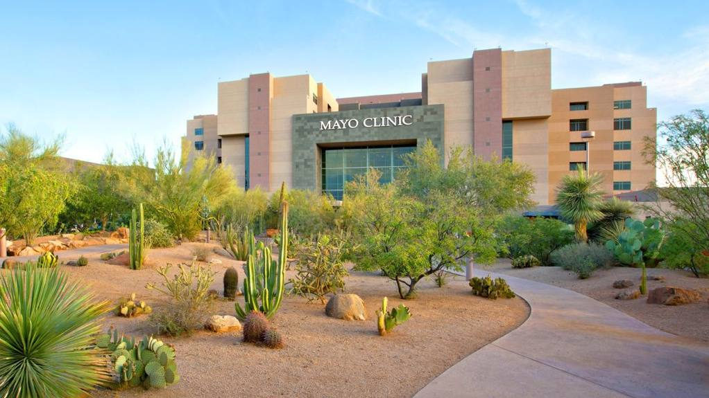 Mayo Clinic Arizona building with cactus in the foreground and a blue sky in the background