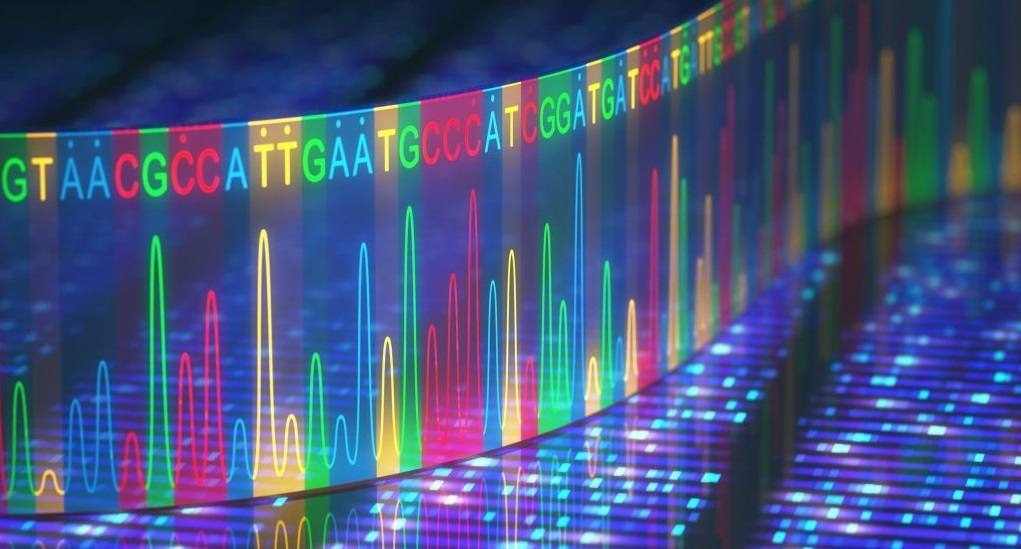 colorful graphic representing genetic health
