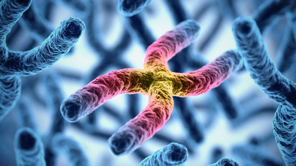 3d medical illustration of chromosomes representing gene therapy