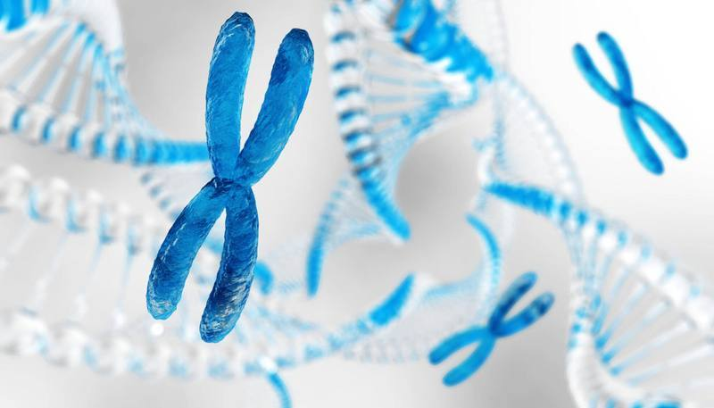 X chromosome against the background of DNA. Chromosomes and DNA. 3D rendering