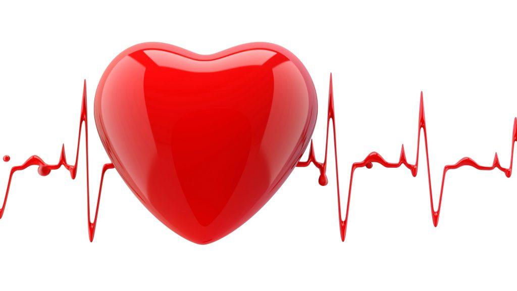 心脏和心跳节奏的图像