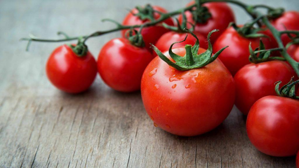 坐在桌子或厨房柜台上的葡萄藤上的新鲜西红柿